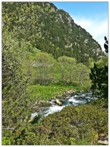 Rivière Nuria