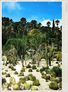 Jardins Mossén Costa i Llobera
