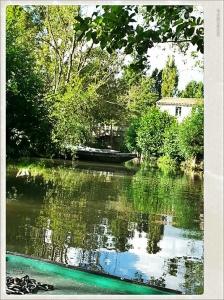Promenade en barque sur le marais poitevin