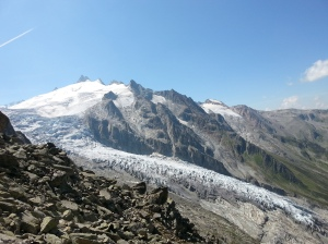 Le glacier du Trient